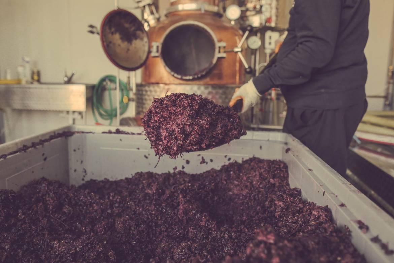 distilleria-8.jpg